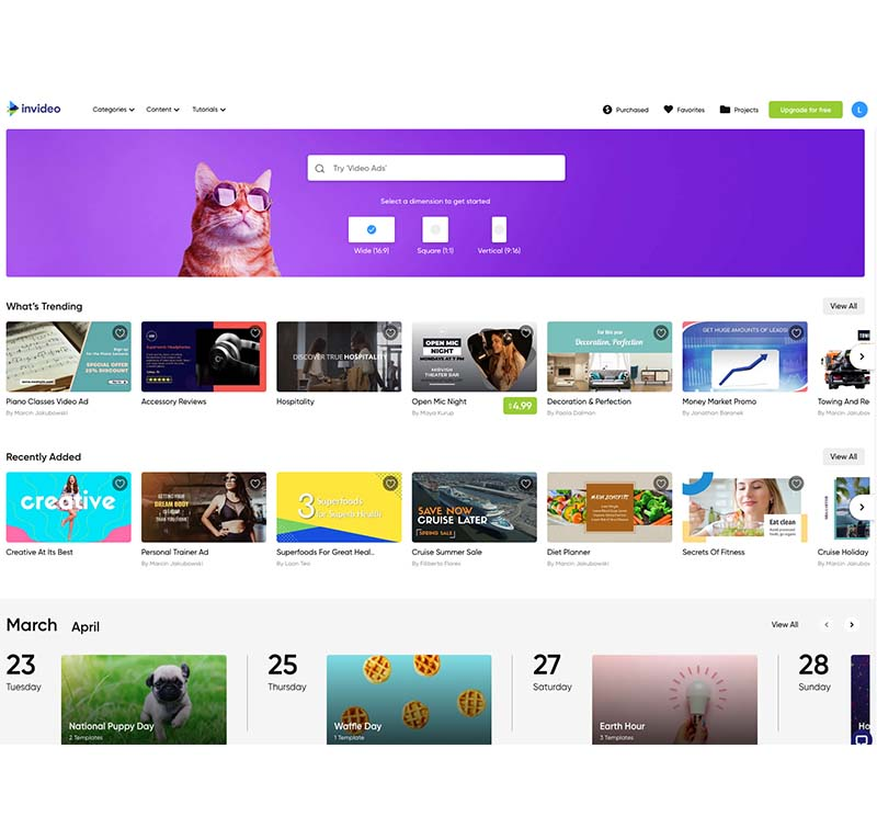 InVideo-video-StartPoint