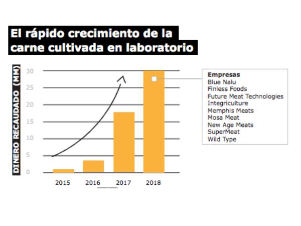 Crecimiento carne cultivada laboratorio